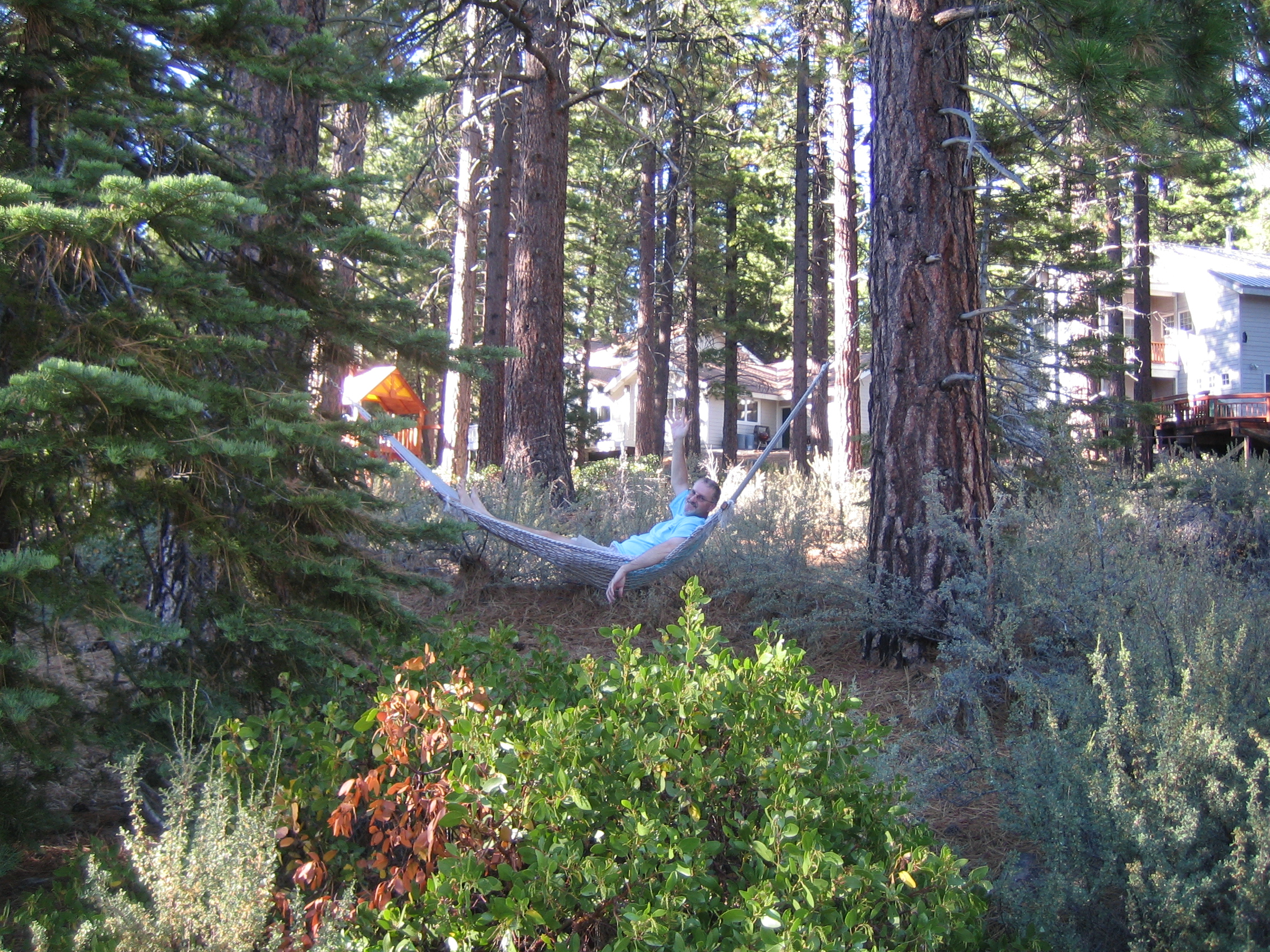 Hammock upon Arrival